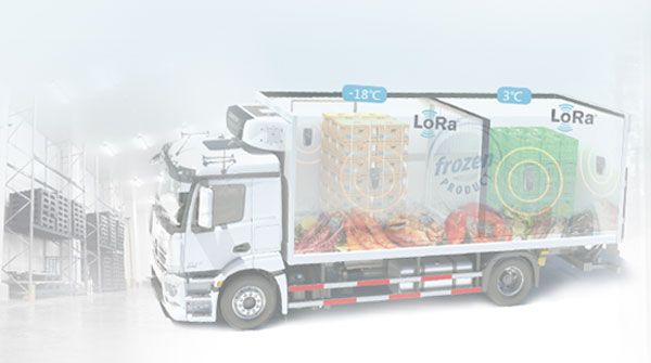 Anewtech-logistics-Cold-Chain-Management